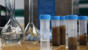 Soil samples taken from an area near last week's explosions at a monitoring station to check for environmental pollution.
