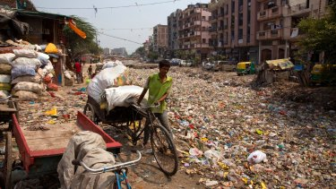 A rag picker pulls his rickshaw along an open drain filled with plastic and stagnant water which act as a breeding ground for mosquitoes in New Delhi, India.