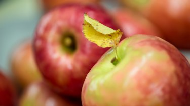 Pink Lady apples.