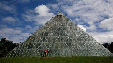 The iconic glass pyramid in Sydney's Royal Botanic Gardens is soon be dismantled.