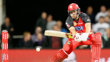Formidable: Renegades captain Aaron Finch.
