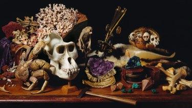 <i>Gorilla Skull </i>(detail).
