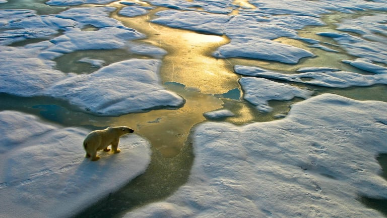 In 2016 overall, warm Arctic temperatures led to the second lowest level of Arctic sea ice ever recorded at the summer minimum.