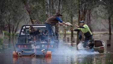 Locals deal with the floods near Oxley.