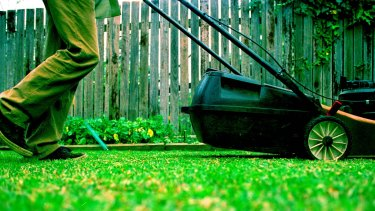 Extreme risk' companies get Brisbane grass cutting contracts