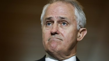 Communications Minister Malcolm Turnbull says the attraction of a free vote for MPs on same-sex marriage was that it would resolve the issue before the election.