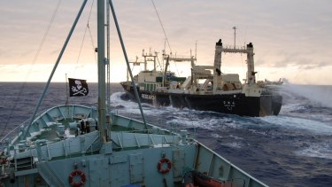The anti-whaling group Sea Shepherd's ship Robert Hunter (on left of photo) closes in on the Japanese whaling ship Nisshin Maru in Antarctic waters.