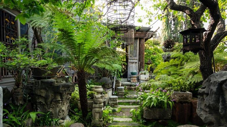 Cevan Forristta's garden in San Jose, Califiornia.