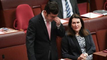 Labor senator Sam Dastyari makes a statement to the Senate.