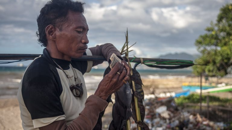 A spear fisherman counts the day's takings in Dili.