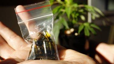 Medicinal cannabis my soon be legalised in Australia.