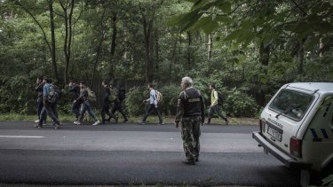 A Hungarian field ranger watches a group of refugees who crossed the Serbian border into Hungary near the town of Asotthalom on Sunday.