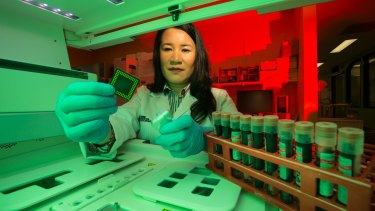 Dr Lesley Cheng is working on a blood test to diagnose Alzheimer's disease.