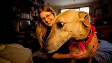 Monash University defends greyhound killing, says research