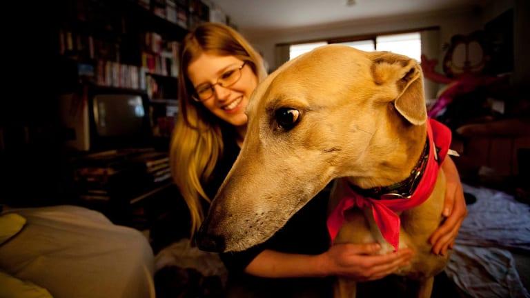 Veterinarian Belinda Oppenheimer rescued her greyhound Till from Melbourne University's now defunct greyhound blood-bank program.