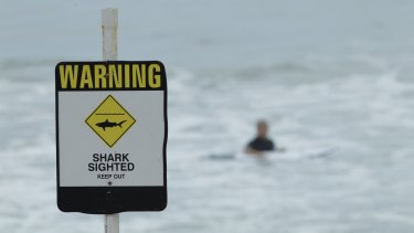 Warnings of danger are not always heeded, as proved at a Newcastle beach.