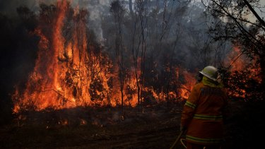 NSW Rural Fire Service crews struggle to contain an out of control bushfire around the Wentworth Falls escarpment in August.