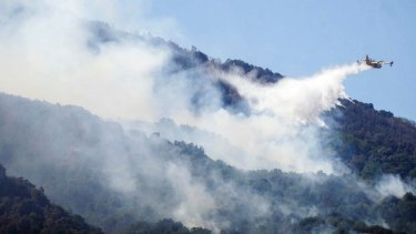 Southern Europe is expected to become hotter and drier, particularly in summers, increasing the risk of forest fires.