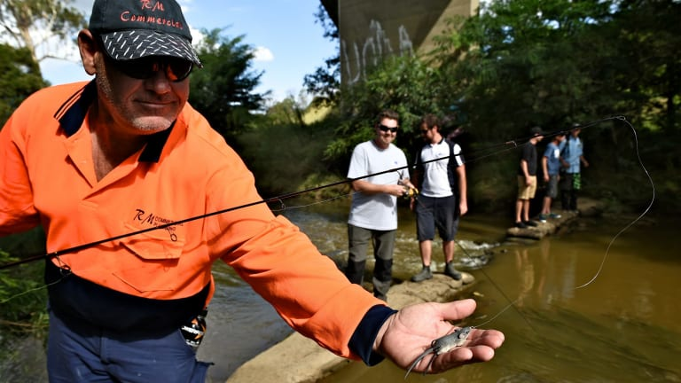 A group of passionate bass fishers have found themselves at the forefront of a campaign to help save their beloved South Creek after a toxic spill.
