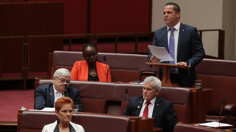 One Nation senator Peter Georgiou delivers his first speech to the Senate on Wednesday.