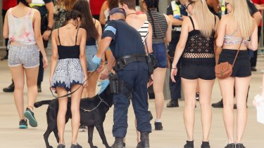 Police with sniffer dogs searched patrons before entry into the Stereosonic music festival in Melbourne.
