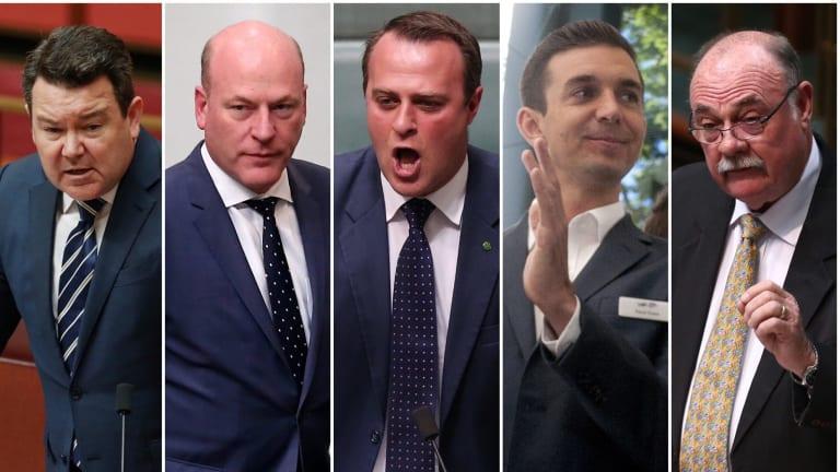 Coalition MPs Dean Smith, Trent Zimmerman, Tim Wilson, Trevor Evans and Warren Entsch.