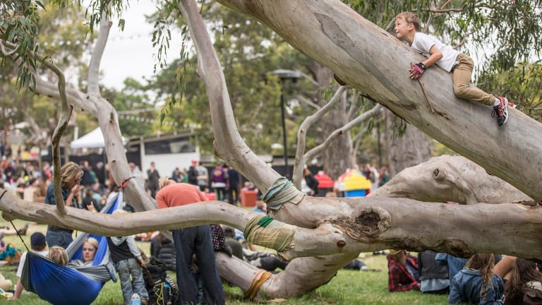 Just hanging out: the Meredith Music Festival.