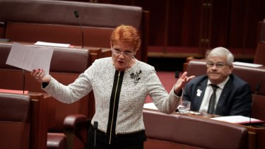 One Nation leader Pauline Hanson during question time on Thursday.