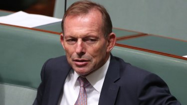 Former prime minister Tony Abbott can't keep his head down.