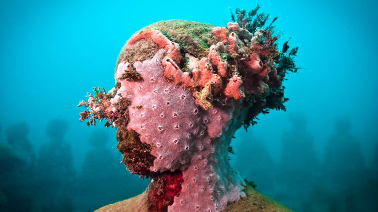 Jason deCaires Taylor, Vicissitudes, 2001 (detail), Courtesy of the artist.