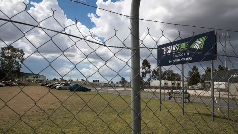 Thomas Foods makes use of an army of migrant workers at its Tamworth processing plant.
