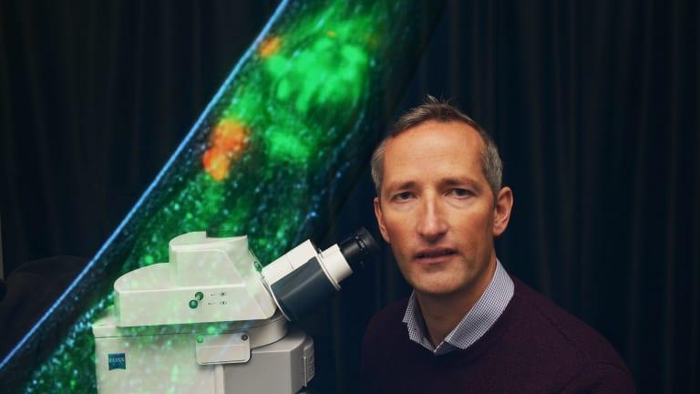 Neurogeneticist associate Professor Roger Pocock.