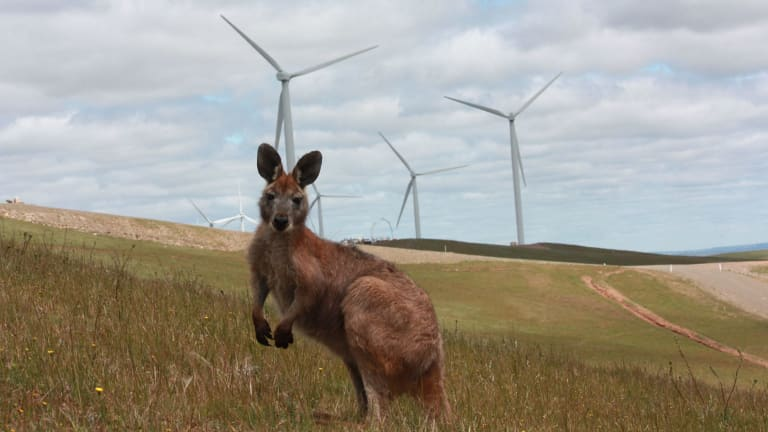 Australia's energy industry largely remains in the dark as to the details of the proposed national energy guarantee.
