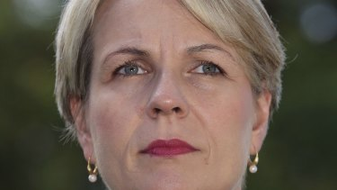 """Labor's foreign spokeswoman Tanya Plibersek says if Mr Abbott believes Australia should be involved in Syria """"he should make a case to the Australian people"""" in the Parliament."""