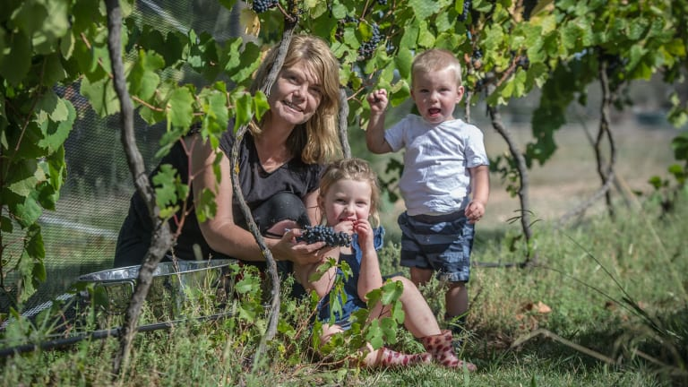 Summerhill Road Vineyard owner Sarah McDougall with her kids Eloise and Ryder.