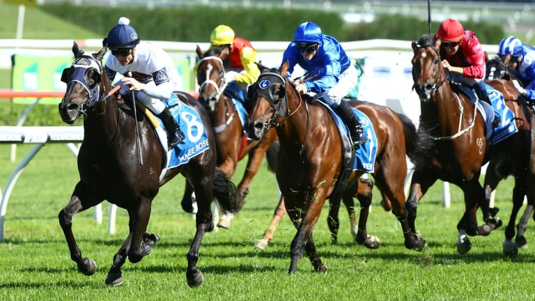 Golden chance: Zac Purton rides Yankee Rose to win the Sires Produce.