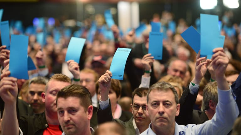 Delegates vote at the Alternative for Germany (AfD) federal congress.