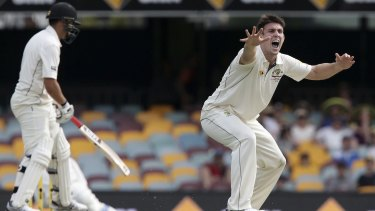 Close call: Australia's Mitch Marsh, right, appeals for the wicket of New Zealand's Ross Taylor.