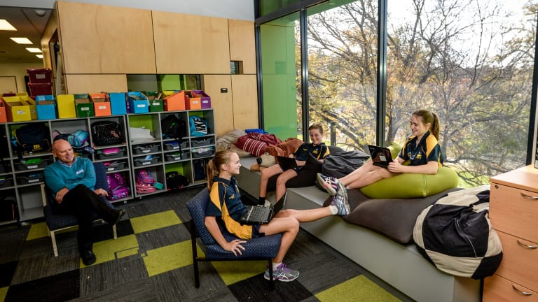 Golden Square Primary students learn among the tree tops with principal Barry Goode.