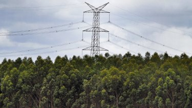 Power lines next to Victoria's Mortlake gas-fired power station.
