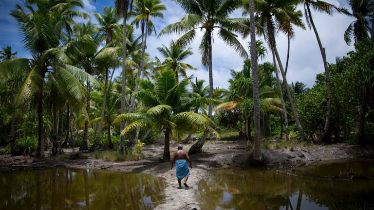 Kianteata Bwaurerei lost his taro pits to inundation on Abaiang, an atoll in Kiribati.