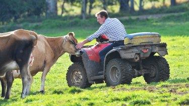 Dairy farmer Paul Mumford on his Won Wron farm.