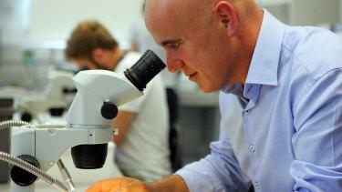 NSW Education Minister Adrian Piccoli at Western Sydney University Hawkesbury campus.