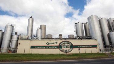 Canadian-owned Saputo seeking full control of Warrnambool Cheese & Butter.