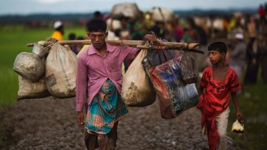 Myanmar's Rohingya ethnic minority members walk through rice fields after crossing over to Bangladesh on Friday.