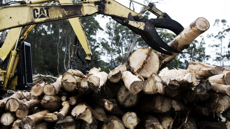 Forestry was among the industries to record 686 deaths in 2003-2014.