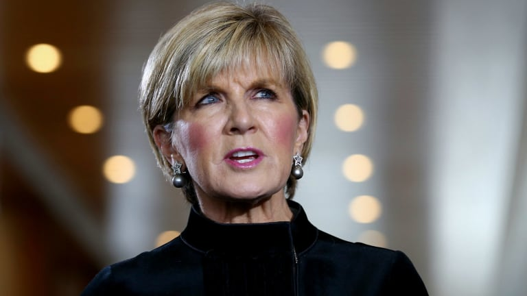 Foreign Minister Julie Bishop addresses the media at Parliament House.