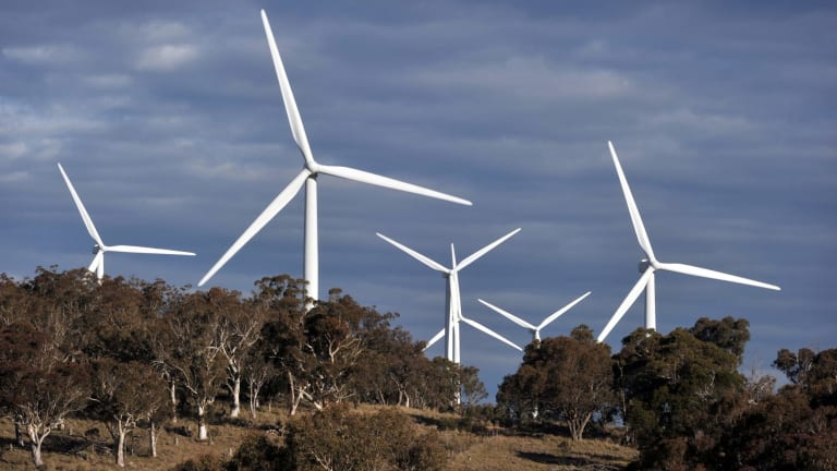 Infigen's Capital Wind Farm near Bungendore, New South Wales. The state will lose economic opportunities if the new energy economy isn't embraced, says Greens climate spokesman Jeremy Buckingham.