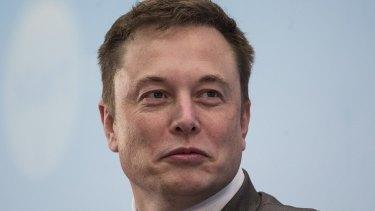 Battery saviour? Telsa chief Elon Musk.