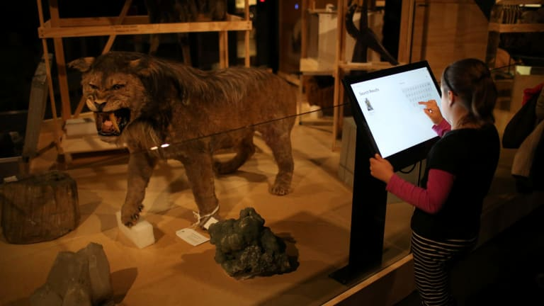 Many museums have kids' activities during the school holidays.